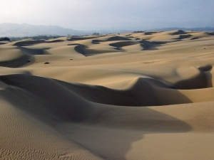 Sand_dunes_-_Oceano_CA wikipedia